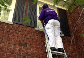 professional Exterior Painter on ladder