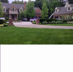 new home maintained lawn and garden
