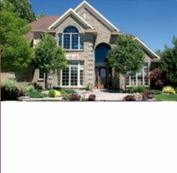 landscaping and landscape construction from absolute home services
