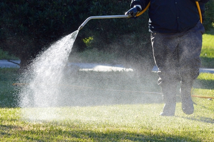 The best way of eliminating any weed problem in your lawn is by making use of pre-emergent weed control.