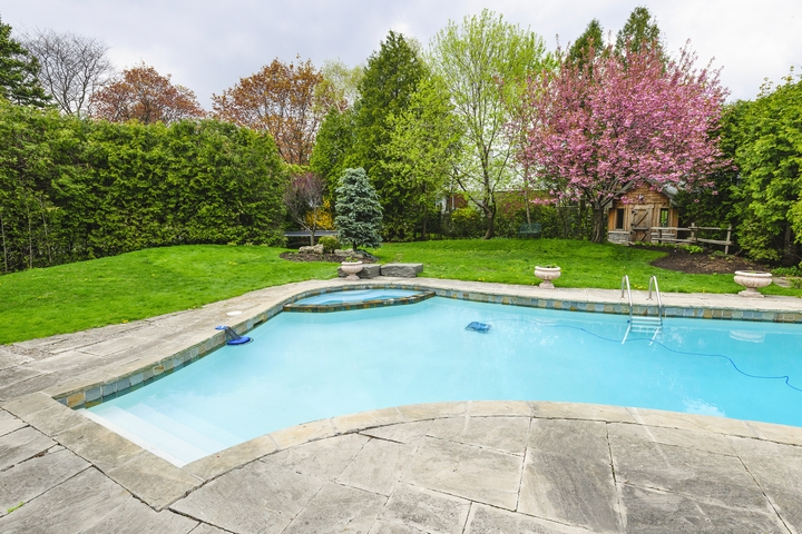 You can add plants and trees around your pool landscaping.