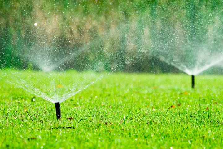 Avoid overwatering your lawn to prevent brown patches on lawn.