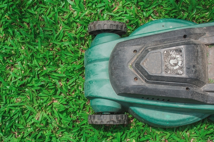 6 Common Lawn Cutting Mistakes to Avoid