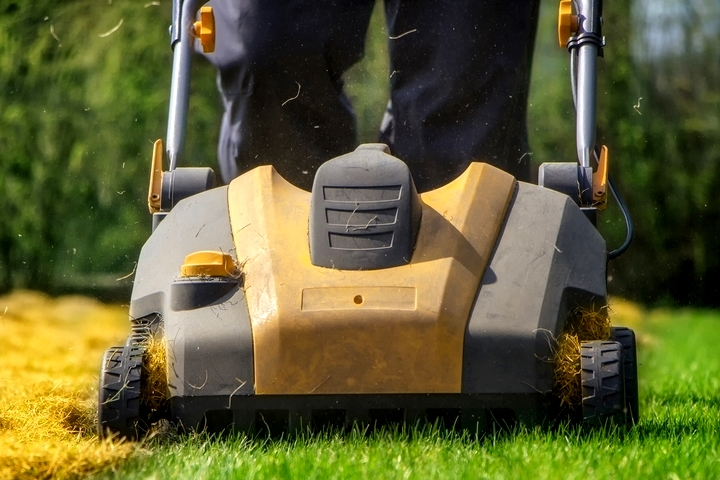 Cutting the grass too low