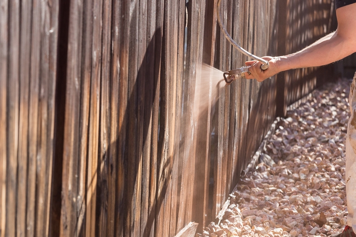 Stain the fence.