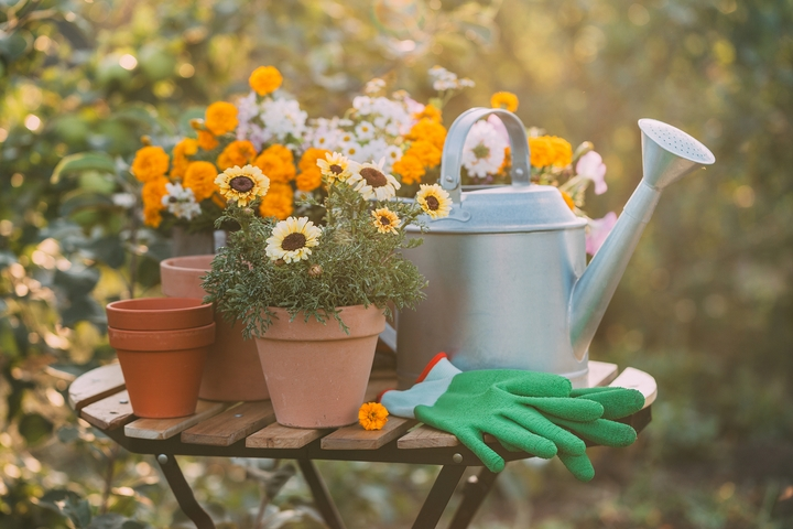 7 Simple Tasks to Begin Your Fall Garden Prep