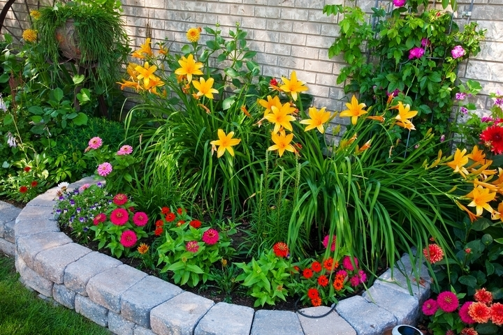 A pop of colour might be exactly what your front yard landscpaing needs.