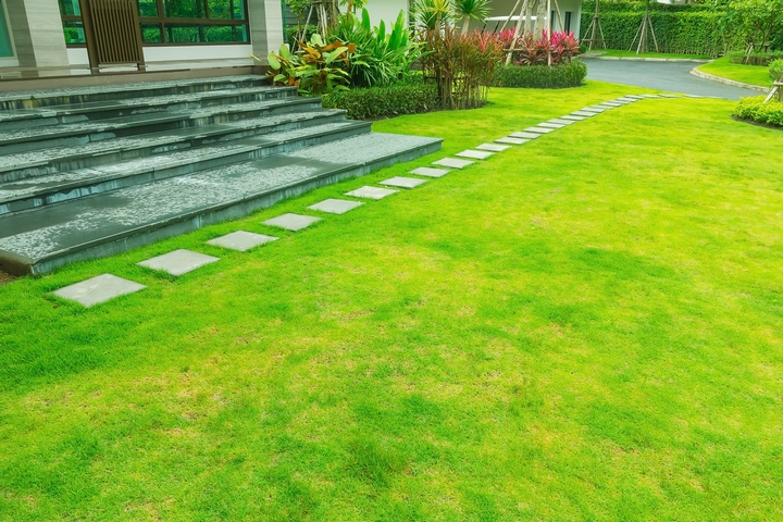 Try to transition your front yard landscaping ideas.